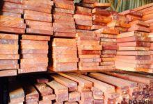 gỗ căm xe
